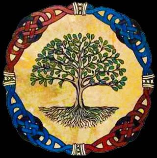 Omoloko - l'arbre sacré Iroko