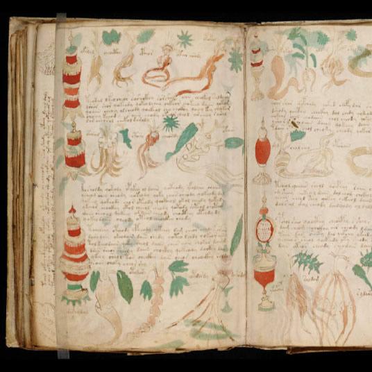La manuscrit de Voynich