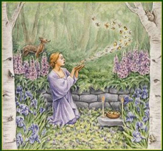 Propriétés magiques des plantes
