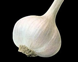 Une gousse d'ail