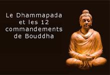 Les 12 commandements de Bouddha